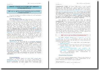 Droit communautaire des droits fondamentaux