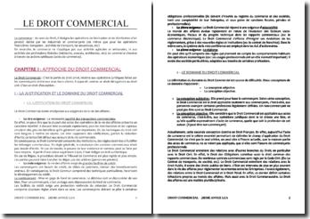 Approche et organisation du droit commercial
