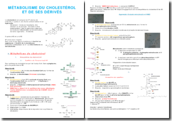 Le métabolisme du cholesterol et de ses dérivés