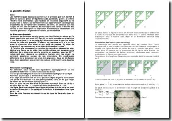 La géométrie fractale
