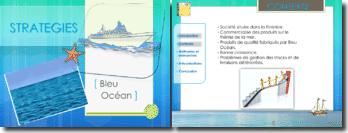 Analyse stratégique d'une société qui commercialise des produits sur le thème de la mer: Bleu Océan