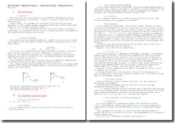 Biochimie métabolique : l'enzymologie élémentaire