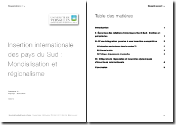 Insertion internationale des pays du Sud : mondialisation et régionalisme
