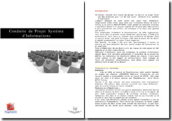 Conduite de Projet Système d'Informations: entreprise REACTIF'IMMO