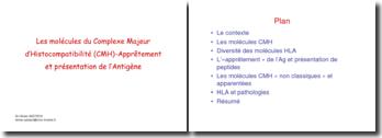Les molécules du complexe majeur d'histocompatibilité (CMH)- apprêtement et présentation de l'antigène