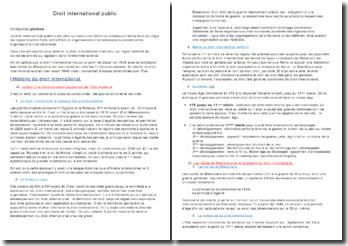 Le droit international public, régie des rapports entre états et organismes internationaux