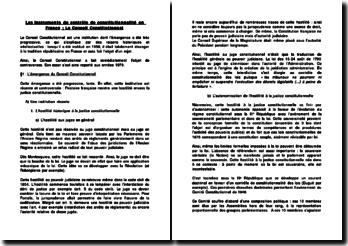 Les instruments du contrôle de constitutionnalité en France: le Conseil constitutionnel