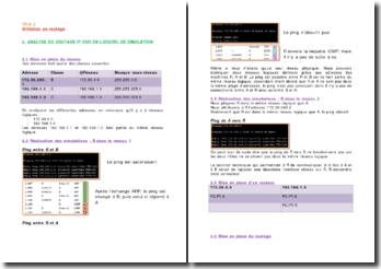 Analyse du routage IP sur un logiciel de simulation
