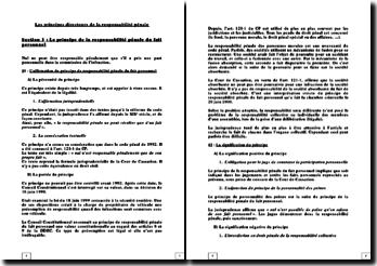 Les principes directeurs de la responsabilité pénale