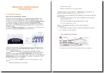 Les membranes et les différenciations membranaires