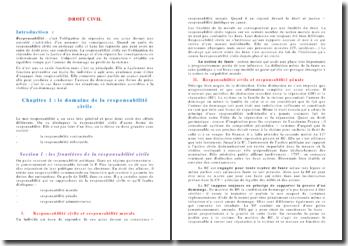 Cours de droit civil: la responsabilité civile