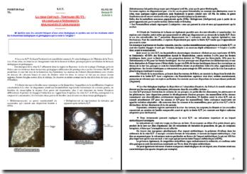La crise crétacé-tertiaire(K/T): un couplage d'événements biologiques et géologiques