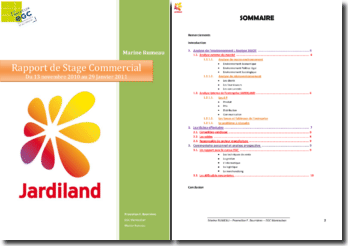 Rapport de Stage Commercial : Jardiland