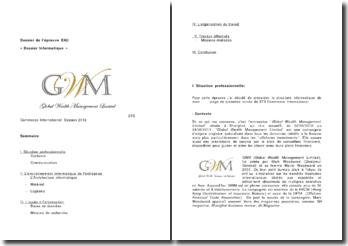 La structure informatique de Global Wealth Management Limited
