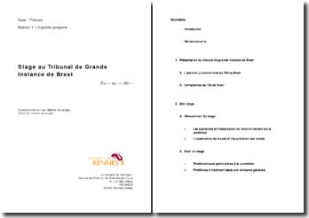 Rapport de stage effectué au Tribunal de Grande Instance de Brest
