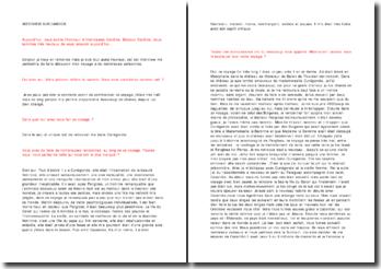 Candide - Voltaire : entretien fictif avec Candide