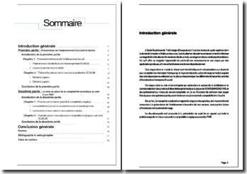 Rapport de stage effectué dans le service comptable d'une entreprise de distribution et commercialisation de produits alimentaires: la Sojalim