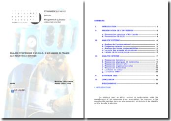 Analyse stratégique d'un DAS d'Air Liquide en France: gaz industriels services