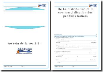 Rapport de stage effectué dans la Société Dices Lines de Marrakech: de la distribution et la commercialisation des produits laitiers