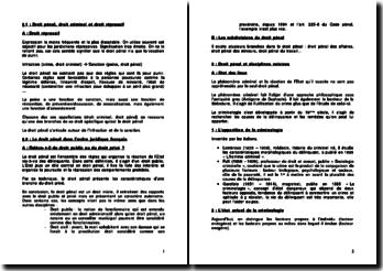Droit pénal: la norme pénale et l'infraction et son auteur