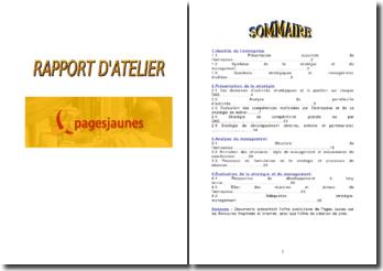 Diagnostic stratégique des Pages Jaunes