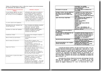 Tableau de comparaisons entre la structure simple et le fonctionnement de l'entreprise des Galeries Lafayette