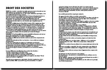 Le droit des sociétés, une ramification du droit des contrats