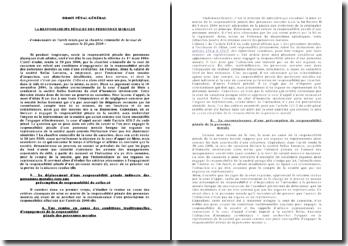 Commentaire de l'arrêt rendu par la Chambre criminelle de la Cour de cassation le 20 juin 2006 : la responsabilité pénale des personnes morales