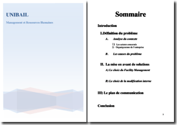 Entreprise Unibail, gestion des coûts du service reprographie du siège social parisien