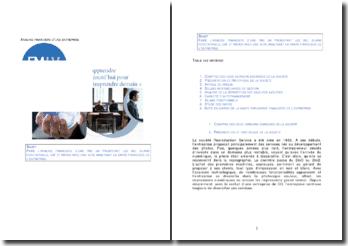 Analyse financière d'une PME: SIG, bilans fonctionnels, CAF et ratios
