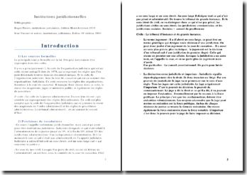 Les institutions juridictionnelles - La justice en France, pouvoirs et tribunaux