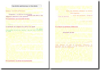 Les droits patrimoniaux et les droits extrapatrimoniaux - définition et typologie