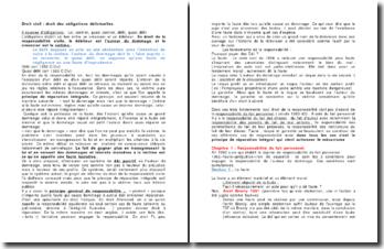 Le droit des obligations délictuelles
