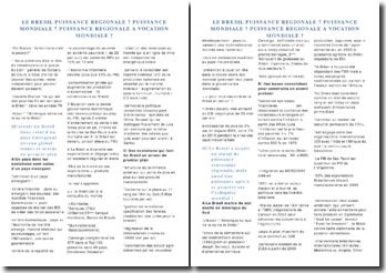 Le Brésil puissance régionale ? Puissance mondiale ? Puissance régionale à vocation mondiale ?