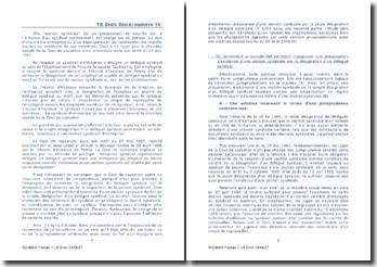 Commentaire de l'arrêt de la Chambre sociale de la Cour de cassation du 27 mai 1997: la section syndicale