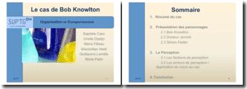 Organisation et comportement : le cas de Bob Knowlton