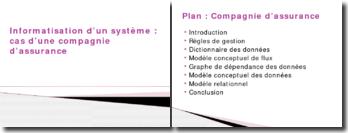 Informatisation d'un système: cas d'une compagnie d'assurance