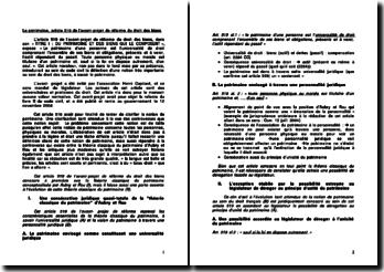 Le patrimoine, article 519 de l'avant-projet de réforme du droit des biens