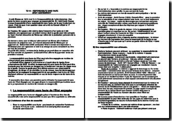 Commentaire d'arrêt rendu par le Conseil d'Etat le 17 décembre 2008 : la responsabilité sans faute de l'Etat