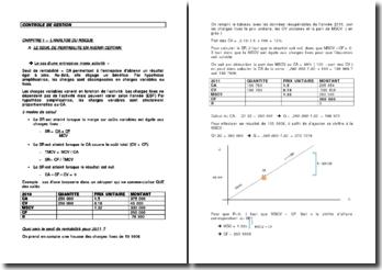 Le contrôle de gestion : l'analyse du risque et l'élaboration des budgets