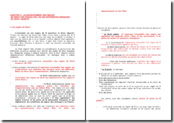Le regroupement des règles de droit par spécialités ou les différentes branches du droit objectif