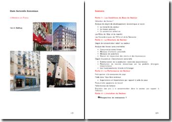 Une étude sectorielle: l'hôtellerie en France