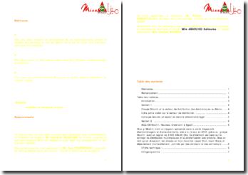 Rapport de stage en tant que conseiller de vente au sein de l'entreprise MIZA au Maroc