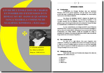 Etude de l'évolution de charge et possibilité d'extension d'un réseau MT/BT dans le quartier Sanga Mambala, commune de Ngaliema à Kinshasa