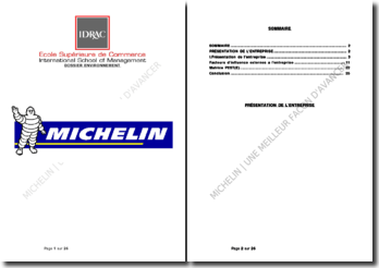 Entreprise Michelin