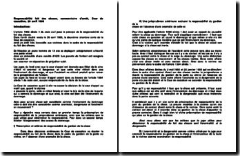Responsabilité du fait des choses, commentaire d'arrêt, Cour de cassation, 29 avril 1998