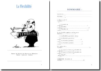 La fléxibilité - définition, applicabilité aux ressources humaines et analyse