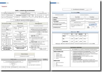 Une fiche récapitulative sur l'entreprise dans son environnement et les structures de l'entreprise