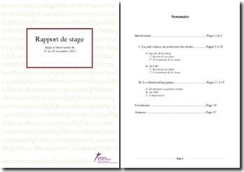 Rapport de stage d'observation dans le cadre de la formation de professeur des écoles