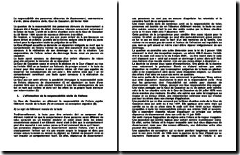 La responsabilité des personnes démunies de discernement, commentaire d'arrêt, 2ème chambre civile, Cour de Cassation, 28 février 1996